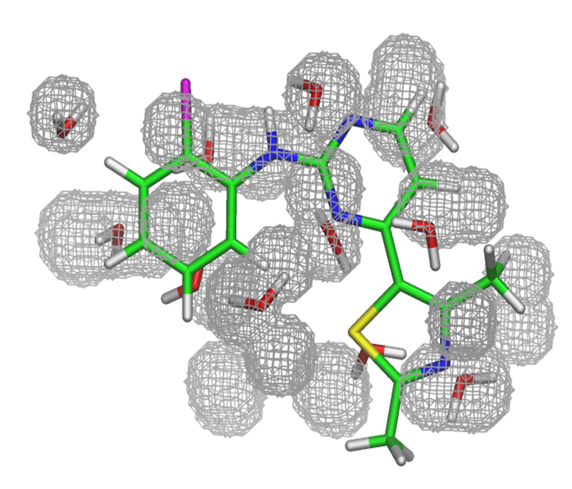 Water Molecules In Protein Binding Sites